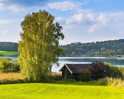 Как купить земельный участок фото 373349